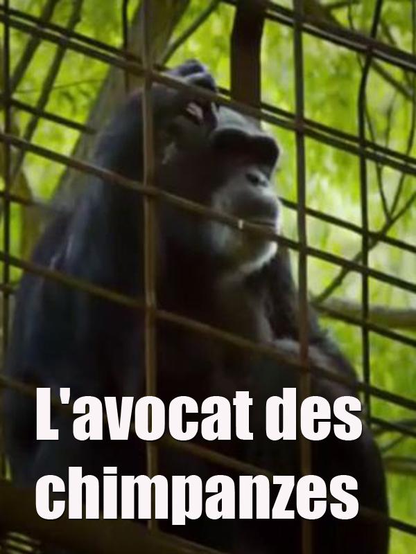 L'avocat des chimpanzés | Hegedus Et D. A. Pennebaker, Chris (Réalisateur)