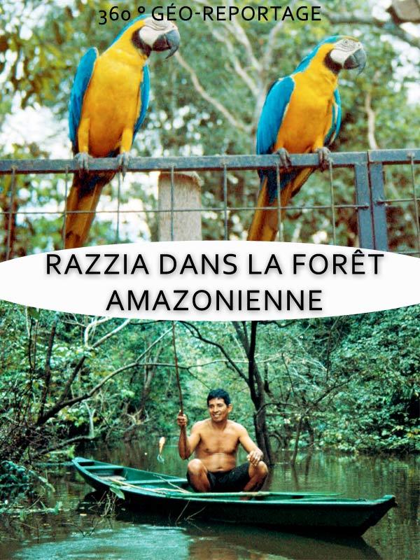 360° Geo-Reportage - Razzia dans la forêt amazonienne | Meyer, Kerstin (Réalisateur)