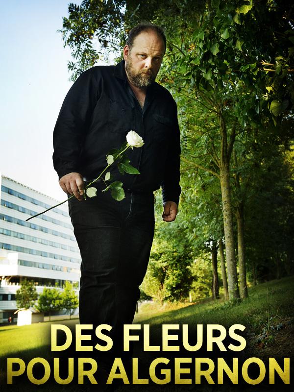 Des Fleurs pour Algernon | Angelo, Yves (Réalisateur)
