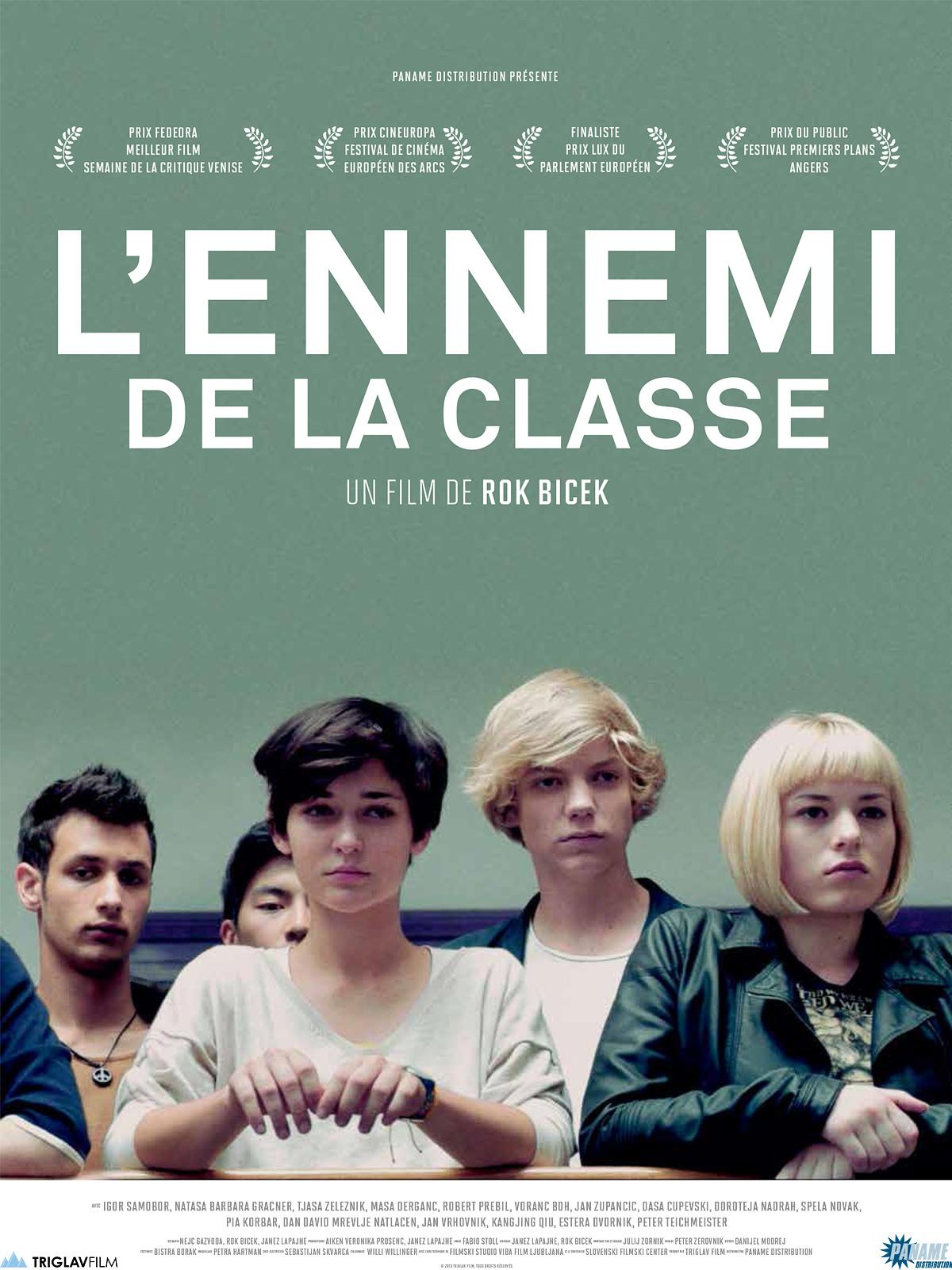 L'Ennemi de la classe | Bicek, Rok (Réalisateur)