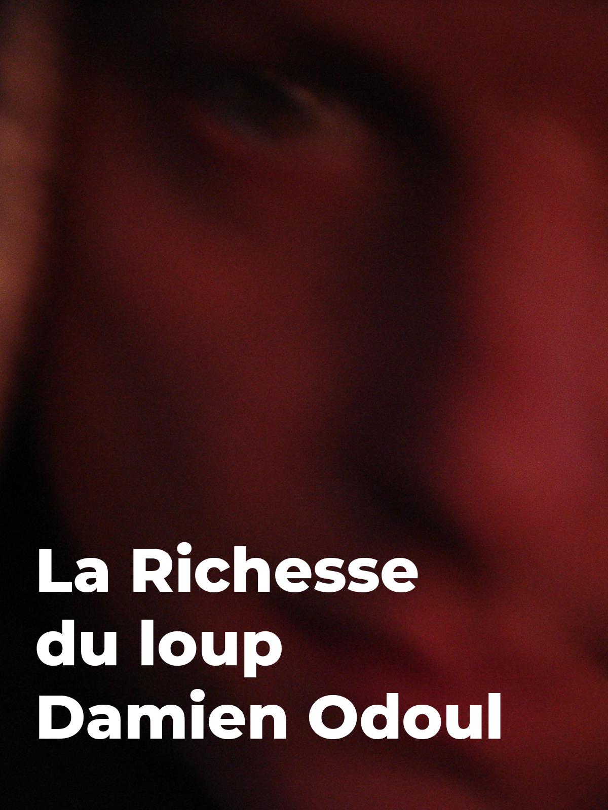 La Richesse du loup | Odoul, Damien (Réalisateur)