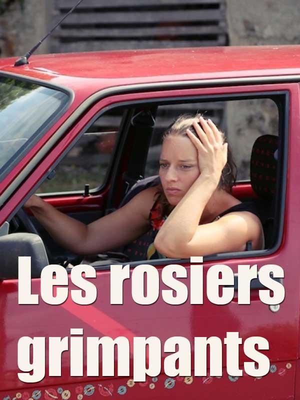 """Afficher """"Les rosiers grimpants"""""""