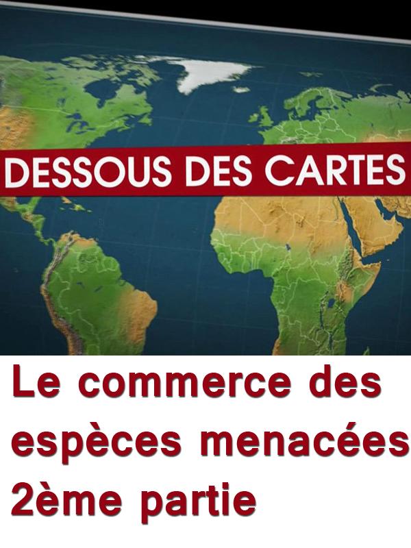 Dessous des cartes - Le commerce des espèces menacées - 2ème partie | Victor, Jean-Christophe (Réalisateur)