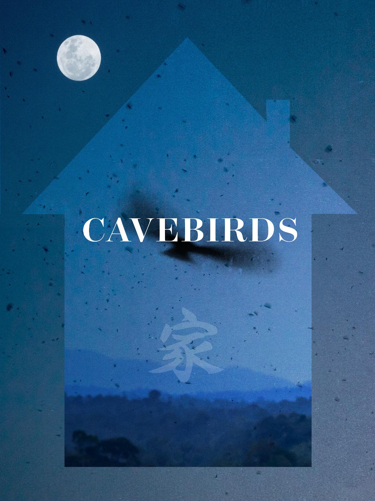 Cavebirds | Gan, Emily (Réalisateur)