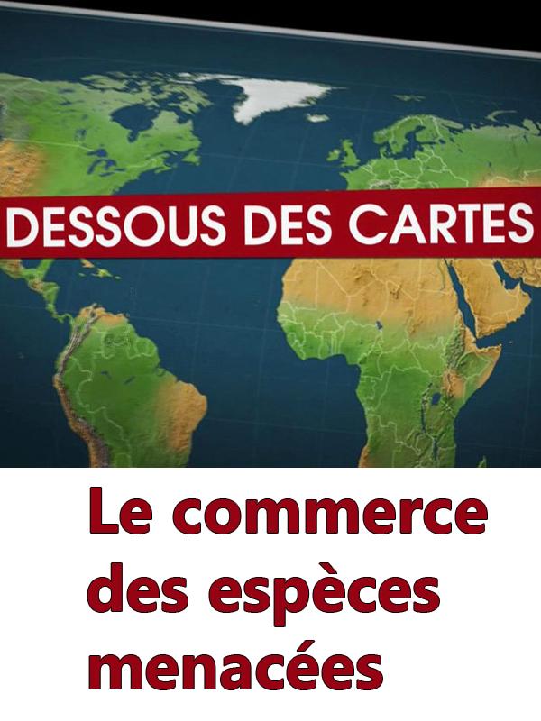 Dessous des cartes - Le commerce des espèces menacées | Victor, Jean-Christophe (Réalisateur)