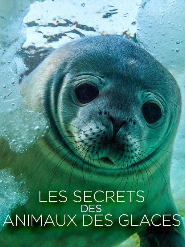 Les secrets des animaux des glaces | Bouvier Et Marianne Cramer, Jérôme (Réalisateur)