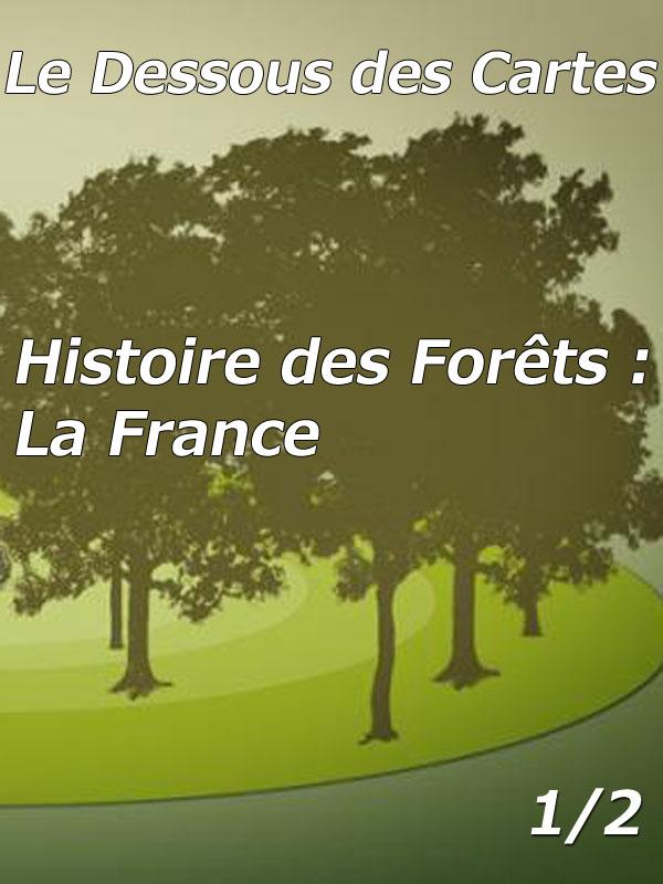 Dessous des Cartes - Histoire des Forêts : La France 1/2 | Jomier, Alain (Réalisateur)
