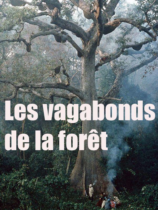 Movie poster of Les Vagabonds de la forêt