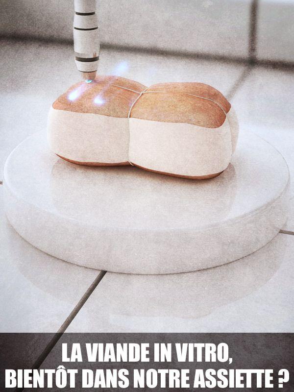 Movie poster of La viande in vitro, bientôt dans notre assiette ?
