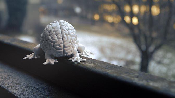 Image de Les pouvoirs du cerveau - Déchiffrer la conscience, voyage dans l'étoffe de nos pensées
