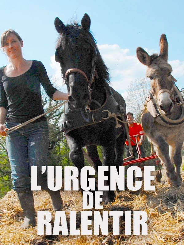 Movie poster of L'urgence de ralentir