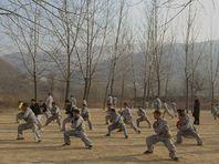 Image de Médecines d'ailleurs - Chine