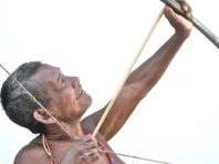 Image de La langue cachée d'Amazonie