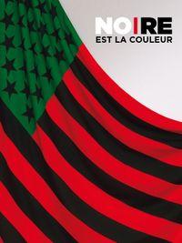 Movie poster of Noire est la couleur