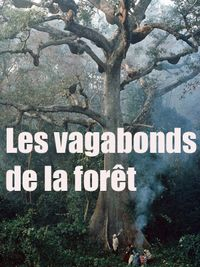 Movie poster of Les Vagabonds de la forêt