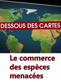 Movie poster of Dessous des cartes - Le commerce des espèces menacées