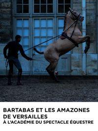 Movie poster of Bartabas et les Amazones de Versailles