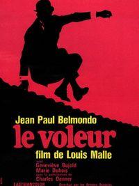 Movie poster of Le Voleur