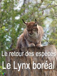 Movie poster of Le retour des espèces - Le lynx boréal