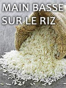 Main basse sur le riz