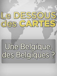 Le Dessous des cartes - Une Belgique, des Belgiques ?