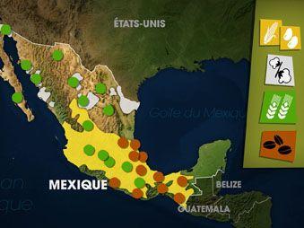 Movie pictures Dessous des cartes - Mexique, un émergent entravé