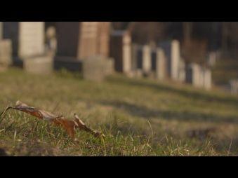 Movie pictures L'immortalité, dernière frontière