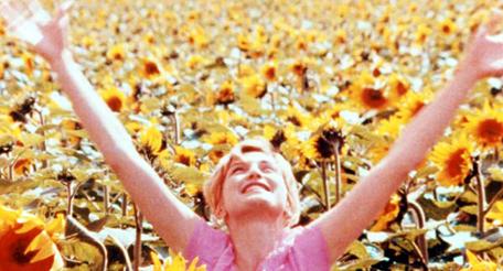Movie pictures Après la pluie, le beau temps