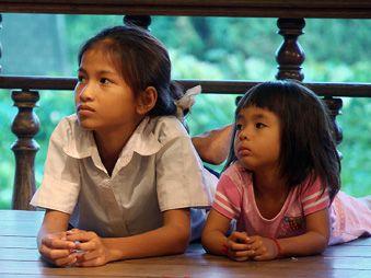 Movie pictures Les Chemins de la beauté