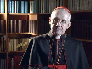 Movie pictures Que veut le pape ?
