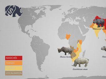 Movie pictures Le Dessous des cartes - Le commerce des espèces menacées
