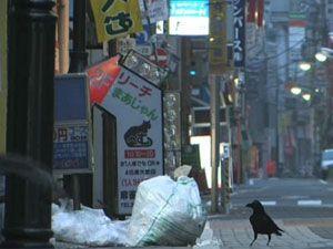 Movie pictures Les Corbeaux de Tokyo